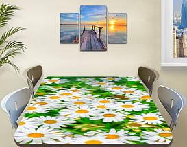 Наклейка на стол Веселые Ромашки белые, наклейки для дизайна интерьера пленка, цветы, белый 60 х 100 см, фото 3