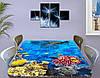 Виниловая наклейка на стол Рыбы и Кораллы декоративная пленка с ламинацией аквариум, голубой 60 х 100 см, фото 3