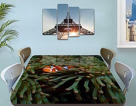 Виниловая наклейка на стол Рыбка Немо декоративная пленка с ламинацией аквариум, коричневый 60 х 100 см, фото 3