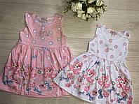 Платье для девочек оптом, S&D, 1-5 лет,  № FF31, фото 1