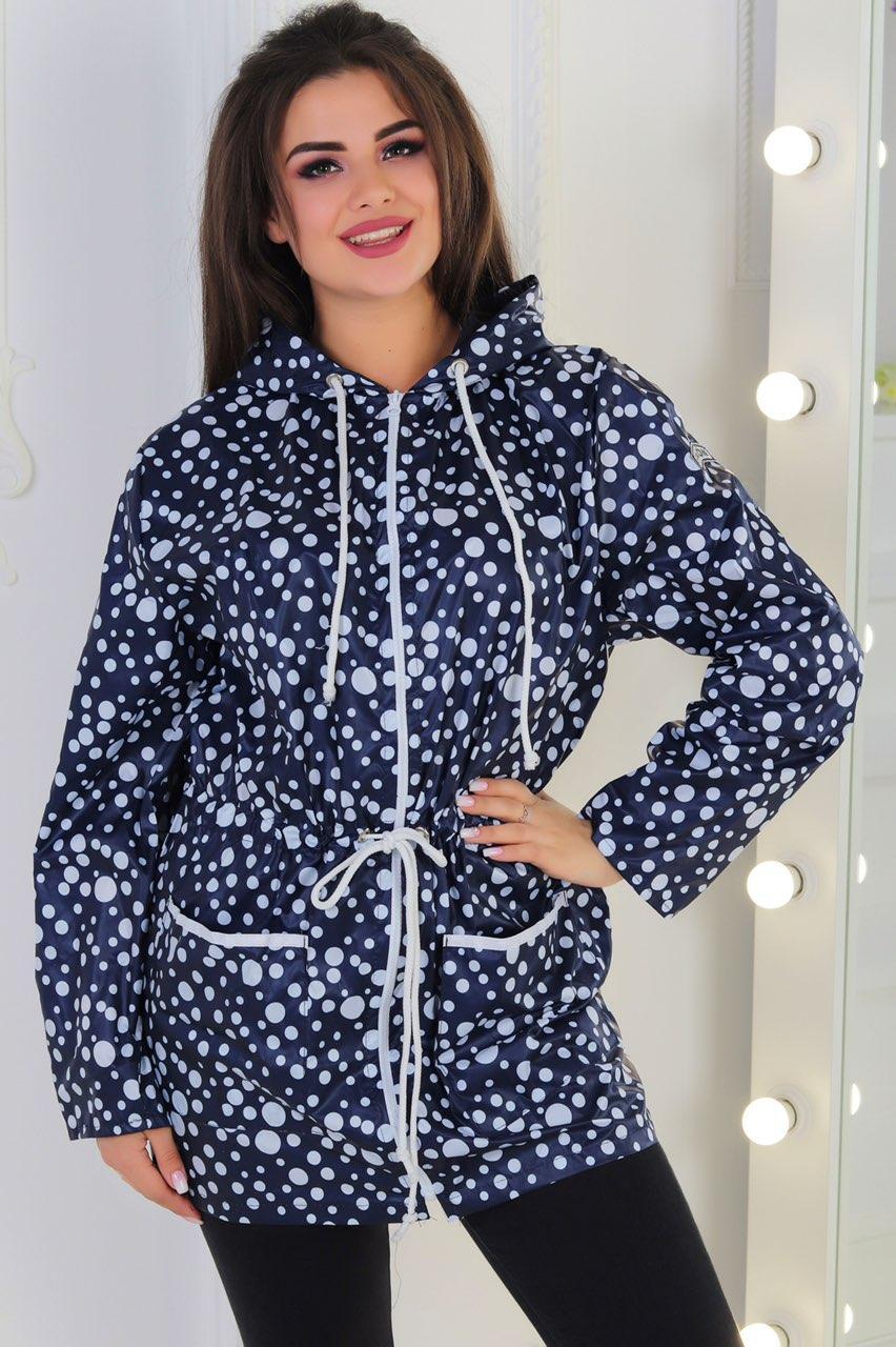 Жіноча демісезонна куртка з плащової тканини без підкладки в горошок розміри 56-62
