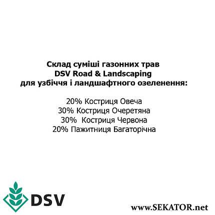 Газонна трава EuroGrass Road & Landscaping / Для узбіччя і озеленення, 10 кг (DSV, Німеччина), фото 2