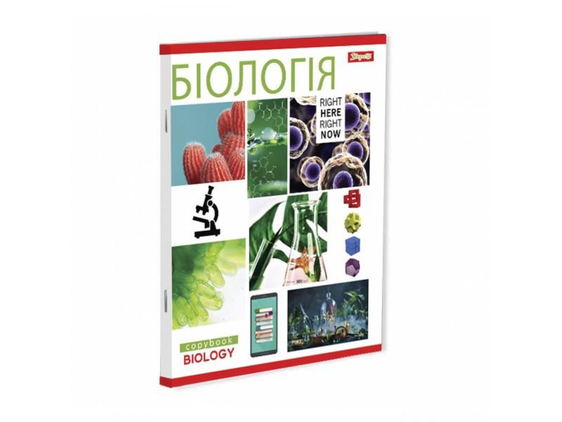 Набор тетрадей ученических ПРЕДМЕТКА PATTERN  (комплект ,микс 8 видов) 764065 1 Вересня  (764065)