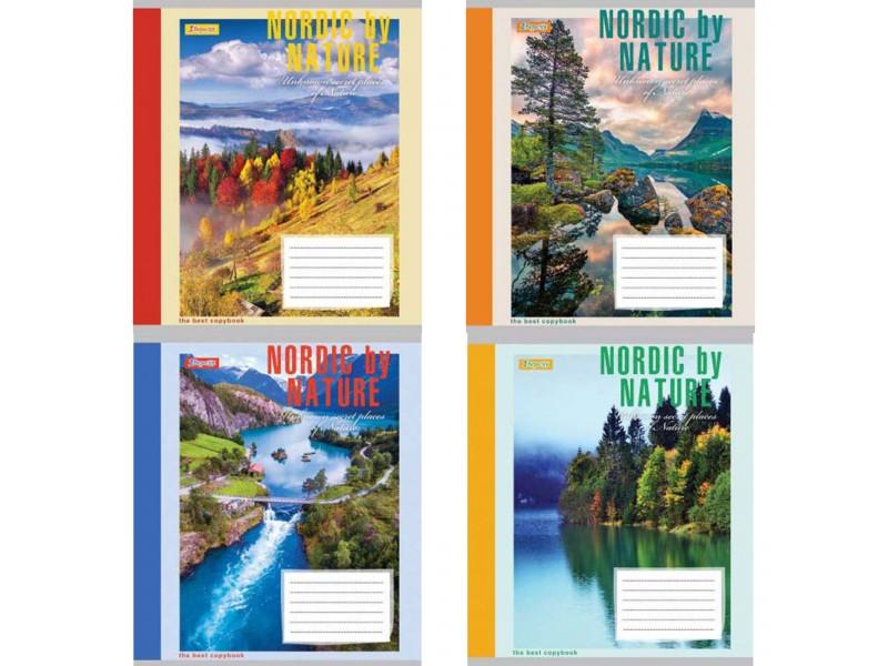 Набір учнівських зошитів(5штук ) 96 аркушів в клітинку 1ВЕРЕСНЯ (763679) 1 Вересня (763679)