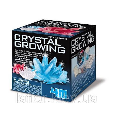 Набор для творчества 4M Секреты кристаллов (00-03913/EU), фото 2