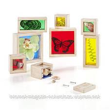 Набор блоков Guidecraft Natural Play Сокровища в ящиках, разноцветный (G3085), фото 2