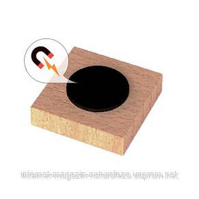 Набор Viga Toys Магнитные буквы Заглавные 40 шт. (50588), фото 2