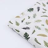 """Сатин ткань """"Маленькая зелёная папороть"""" на белом, №2770с, фото 4"""