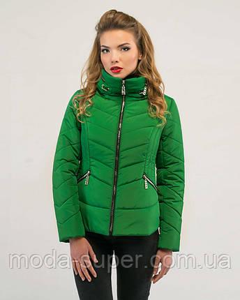 Женская короткая куртка демисезон рр 46-50, фото 2