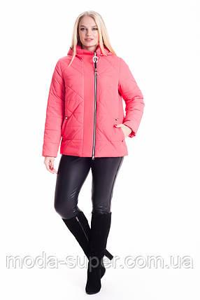 Стильна жіноча куртка молодіжна рр 46-56, фото 2