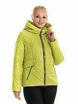 Женская куртка с капюшоном рр 42-56, фото 2