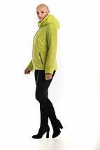 Женская куртка с капюшоном рр 42-56, фото 3