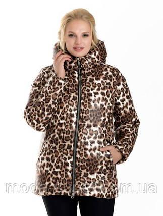 Модная женская зимняя куртка с принтом  рр 42-54, фото 2