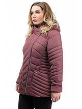 Жіноча куртка полуприталенного силуету рр 50-56, фото 2