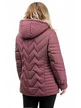 Жіноча куртка полуприталенного силуету рр 50-56, фото 3