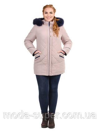 Жіноча зимова куртка великі розміри рр 50-62, фото 2