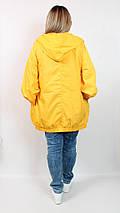 Женская яркая ветровка  Leo Kadia Турция  рр 52-62, фото 3