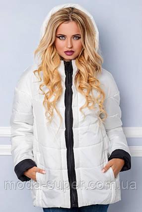 Жіноча куртка демі спортивного стилю рр 44-56, фото 2