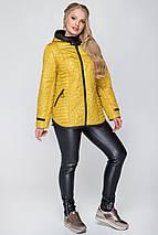 Женская куртка деми с вшитым капюшоном рр 50-60, фото 2