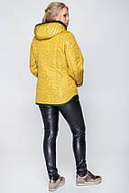 Женская куртка деми с вшитым капюшоном рр 50-60, фото 3