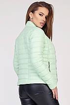 Женская короткая курточка рр 42-48, фото 2