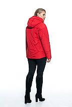 Куртка женская с капюшоном от производителя рр 44-56, фото 2