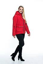 Куртка женская с капюшоном от производителя рр 44-56, фото 3