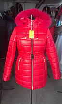 Жіноча зимова куртка із блискавкою ззаду рр 42-58, фото 3