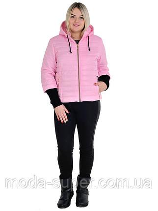 Куртка женская весенняя с рукавом довяз размеры 44 - 54, фото 2