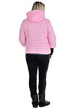 Куртка женская весенняя с рукавом довяз размеры 44 - 54, фото 3
