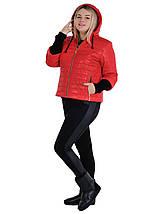 Куртка женская весенняя модель размеры 44 - 54, фото 3