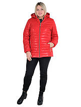 Жіноча куртка стьобаний розміри від 54 до 70, фото 2