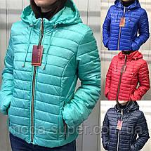 Куртка женская демисезонная рр 42-54, фото 2