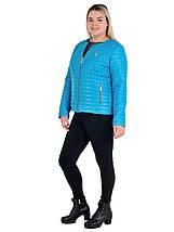 Куртка женская Шанель, размеры 42-62, фото 3