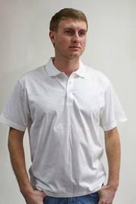 Поло мужское белое Мontana 21153