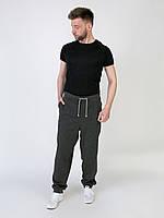 M22-230036, Брюки джогеры  мужские, мужской, серый