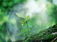 Комплексное экологическое обслуживание