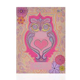 Блокнот А6/64 ЛИН. с твердой обложкой фольга голограф.серебро+УФ-выб. Turnowsky. Art owl YES код:151407