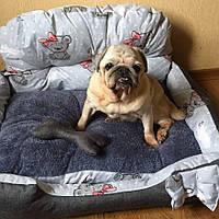 """Лежак """"Диванчик"""" Серый мишка с бантиком 50*70 см"""