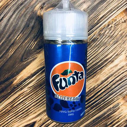 Жидкость Funta 100мл Blueberry, фото 2
