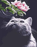 AS 0551 Кот и магнолия Картина по номерам на холсте Art Story 40x50см