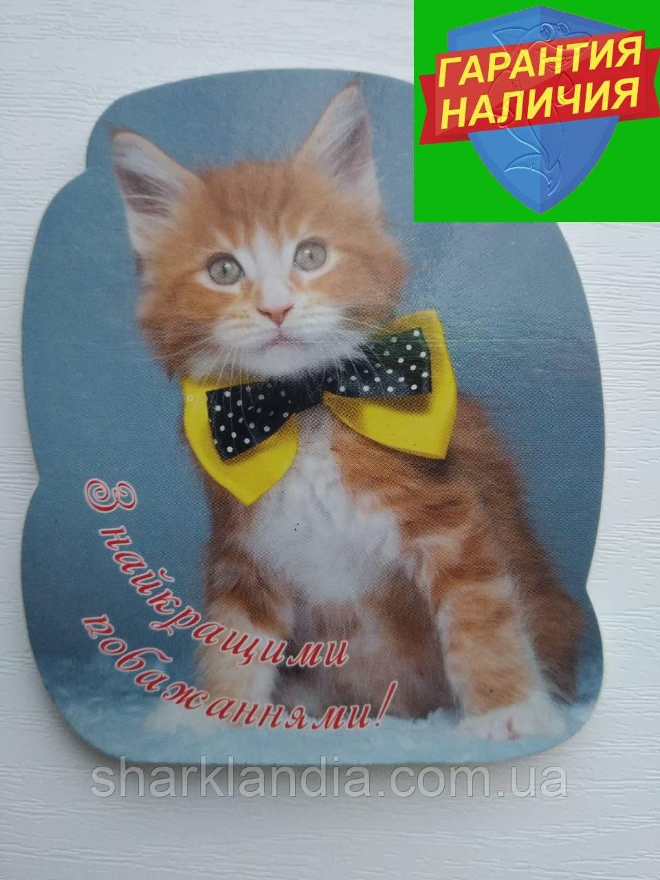 Сувенирный магнит поздравительный  Котик С 8 марта Презент