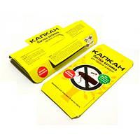 Домик-ловушка «Капкан» для выявления и отлова тараканов, муравьев и других ползающих насекомых.