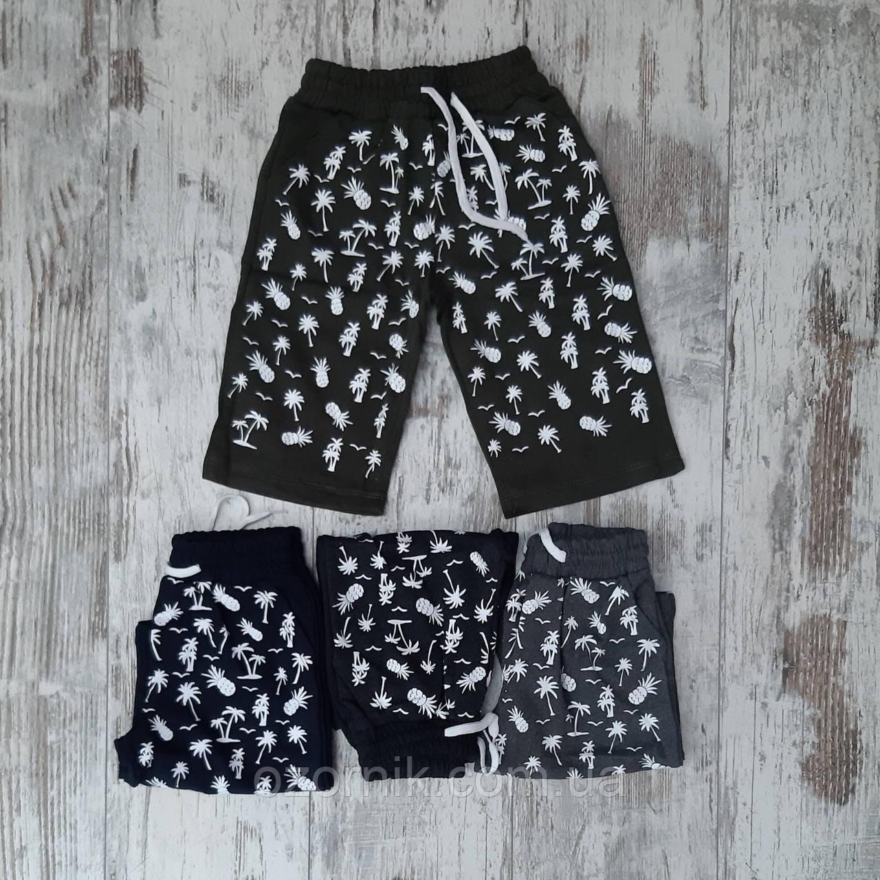 шорты мальчик пальмы