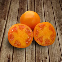 Семена томата  оранжевого Айсан 500 шт Kitano Seeds  / Китано Сидс