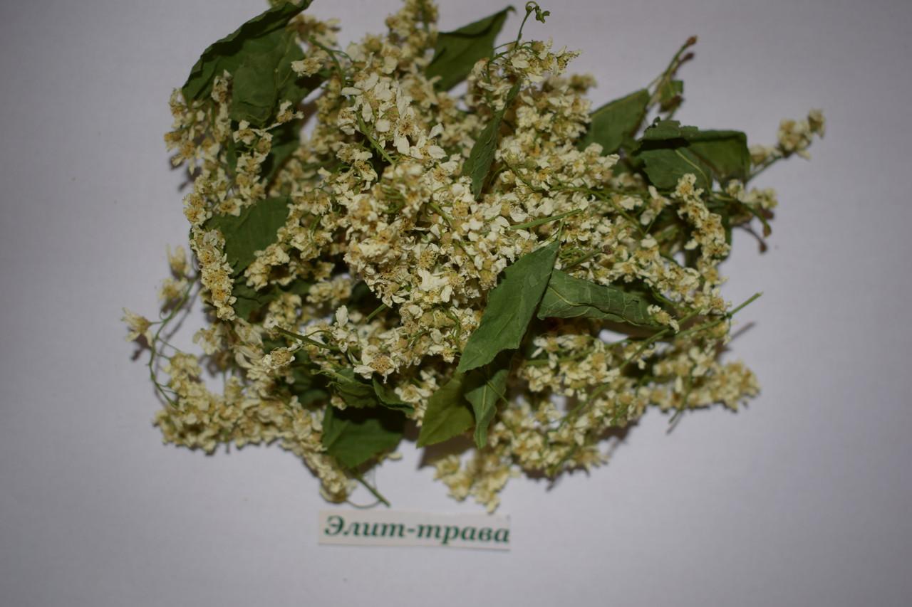 Черемуха цветы 50 грамм