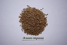 Тмин семена 100 грамм