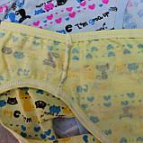 Трусики  для девочек, размер M.  Детские трусики, трусы для девочек, фото 3