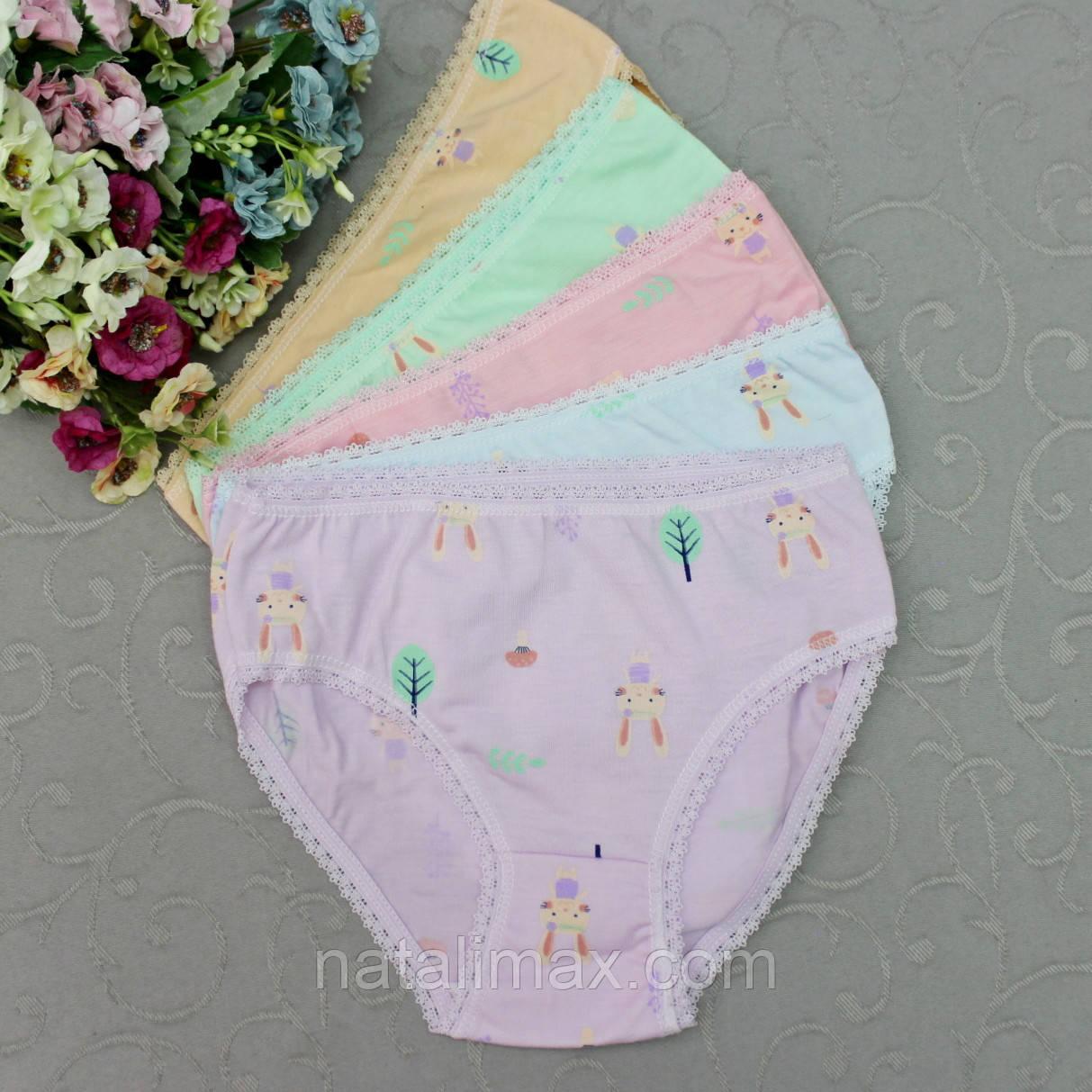 Трусики  для девочек, размер M.  Детские трусики, трусы для девочек