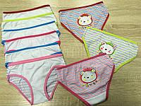 Трусы детские цветные из хлопка до 10 лет «Панда» (6049L)